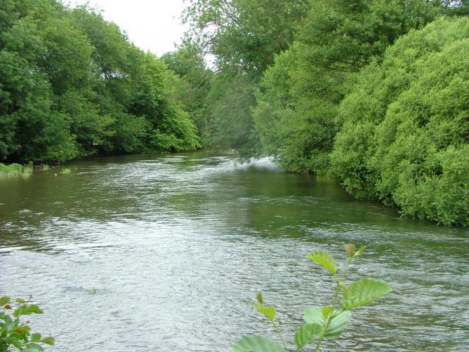 L'Yonne et sa vallée verte